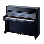PIANO ACÚSTICO PEARL RIVER 118M4 Negro